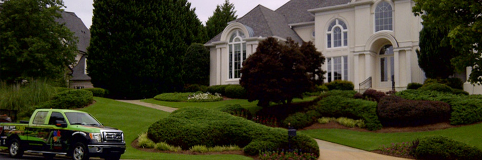 Expert lawn mowing is the cornerstone of any successful lawn maintenance service