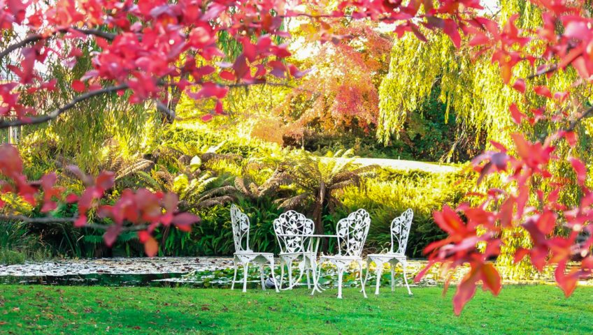 A white metal bistro set is stationed among the green grass, framed by red leaves